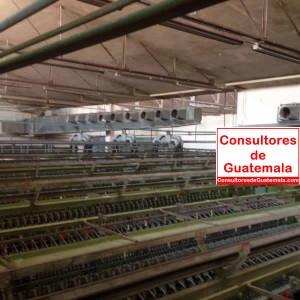 Análisis estructural Plantas industriales en funcionamiento Consultores de Guatemala 9